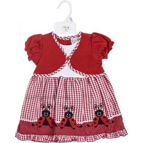 Lovely Ladybird Dress