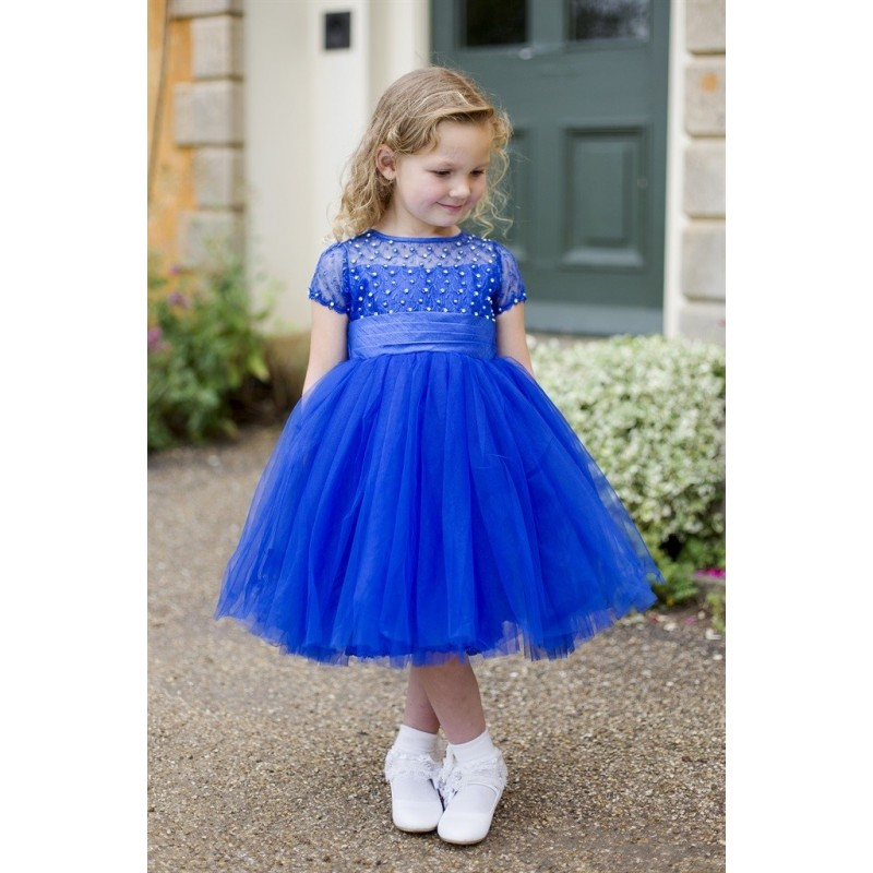 Flower Girl Special Occasion Blue Dress